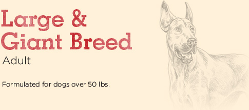 Large & Giant Breed Adult