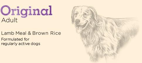 Original Adult Lamb Meal & Brown Rice